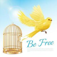 Canary Birdcage Poster vector