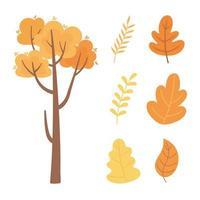 otoño naturaleza árboles, ramas y follaje de hojas iconos vector