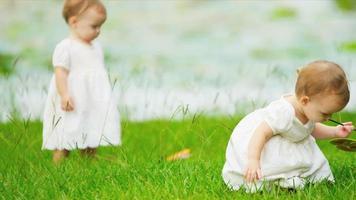 gemelos niña caucásica toddling juntos en el jardín