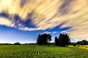 night in the fields photo