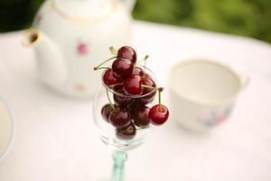 cherry tea cup glass table in a garden courtyard photo