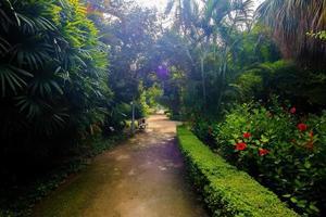 to stroll through the gardens of the Parque de Malaga,