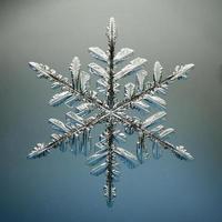 macro snowflake ice crystals present natural photo