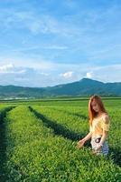 asian young girl in tea garden photo