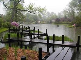 lluvia de primavera pacífica foto