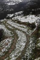 camino nevado local