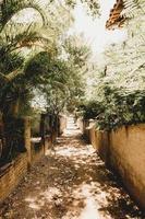 Unpaved pathway between walls