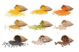 Collection of seeds photo