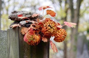flores de otoño en piedra funeraria