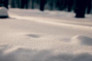 Powdery white snow