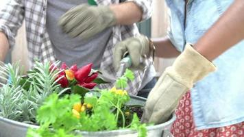 Close Up Of Couple Planting Rooftop Garden Together