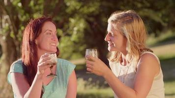 Two young women sharing drinks together in the park
