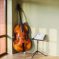 old contrabass photo