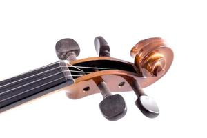 Close-up violin head