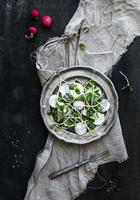 Spring salad with sunflower sprouts and radish in vintage plate