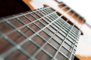 Guitar frets and strings photo