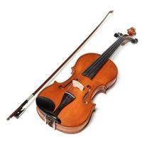 Violins on white background. The Hard light.