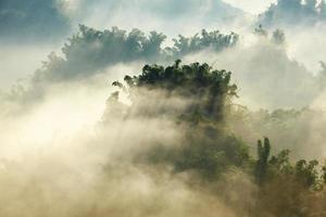sol en la niebla de la mañana