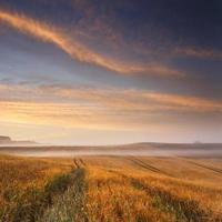 campos de amanecer colorido