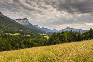 Savoy (France). Chartreuse Mountains and wheat field