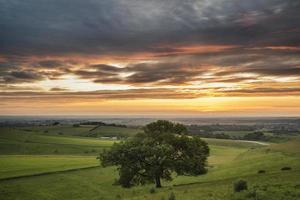 Beautiful Summer sunset landscape Steyning Bowl on South Downs photo