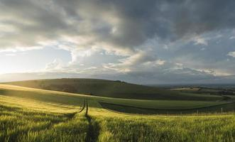Beautiful panorama landscape South Downs countryside in Summer