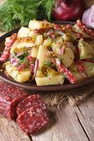 German potato salad on a plate and ingredients, vertical