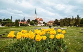 Park near Schoenbrunn Palace photo