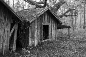 Abandoned Shacks