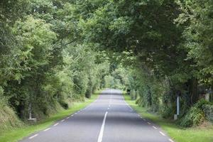 Rural Road, Killarney