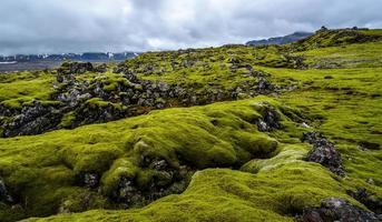 campo de lava com musgo verde na Islândia