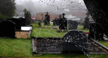 web en el cementerio