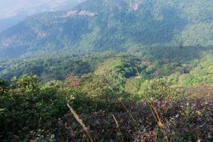 Landscape at Kew Mae Pan, Thailand photo