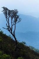 Landscape at Kew Mae Pan, Thailand