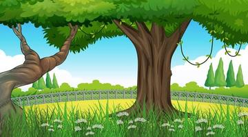 Empty background nature scenery with trees vector