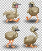 Set of cute goose on transparent background