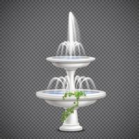 Fountain and climbing ivy vector