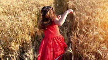 bambina che corre attraversare il campo di grano al tramonto