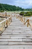 Path between hot springs and fumaroles at Furnas lake