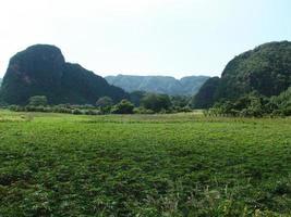 Looking At Vinales Valley In Cuba