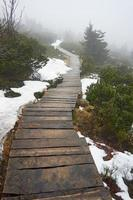 Wooden bridge on a mountain trail in the fog