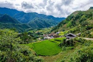 Rice fields on terrace at SAPA, Lao Cai, Vietnam photo