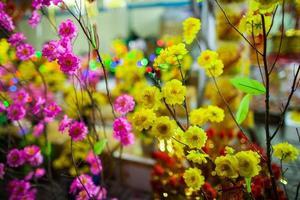 vietnamese traditional flowers photo