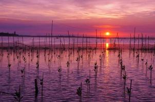 puesta de sol en la laguna de tam giang - hue