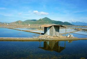 Beautiful landscape, saline filed, Vietnamese countryside photo