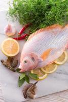 Freshness reddens the Nile Tilapia fish (Oreochromis niloticus) photo