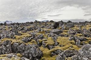 campo volcánico con volcán snaefellsjokul en la parte posterior.