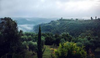 Foggy hillside in Tuscany Italy