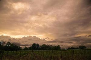 storm in the fields of Italy photo