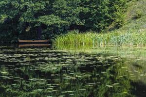 River Black Hancza in Turtul. Poland